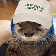 Otterslacks