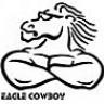 EagleCowboy